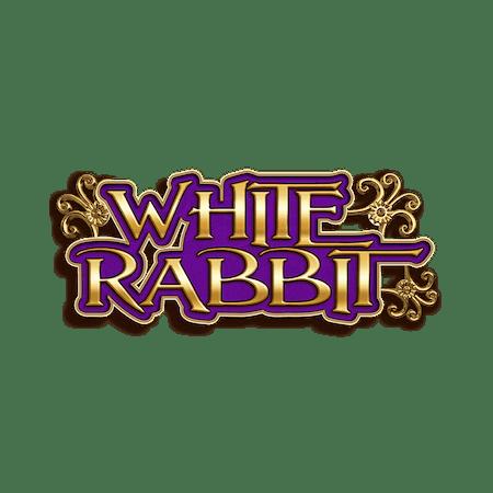 White Rabbit - Betfair Vegas