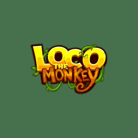 Loco the Monkey     - Betfair Vegas