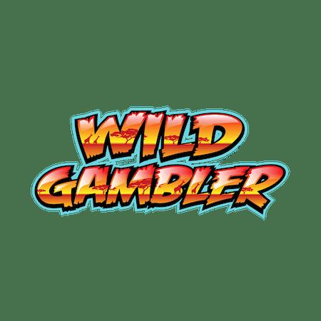 Wild Gambler on Paddy Power Bingo