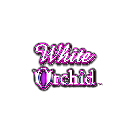 White Orchid on Paddy Power Games