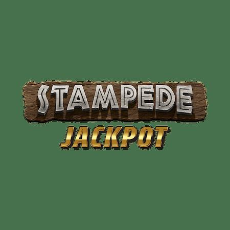 Stampede Jackpot on Paddy Power Bingo